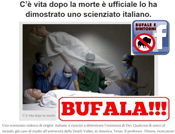 bufala-1